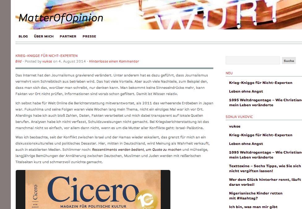Screenshot vom 4. August 2014 der Webseite matterofopinionmedia.wordpress.com/2014/08/04/krieg-knigge-fur-nicht-experten/