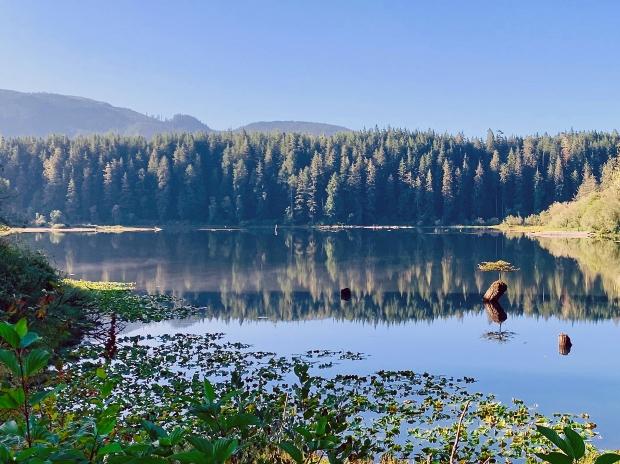 Fairy Lake, Vancouver Island, British Columbia. Foto: Pascal Turin
